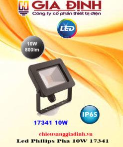 Đèn Led Philips Pha 10W 17341