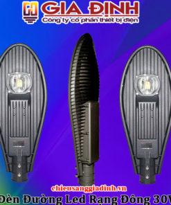 Đèn đường LED Rạng Đông 30W