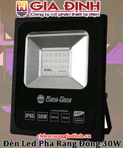 Đèn LED pha Rạng Đông 30W