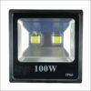 Đèn Led Pha 100W Gia Định